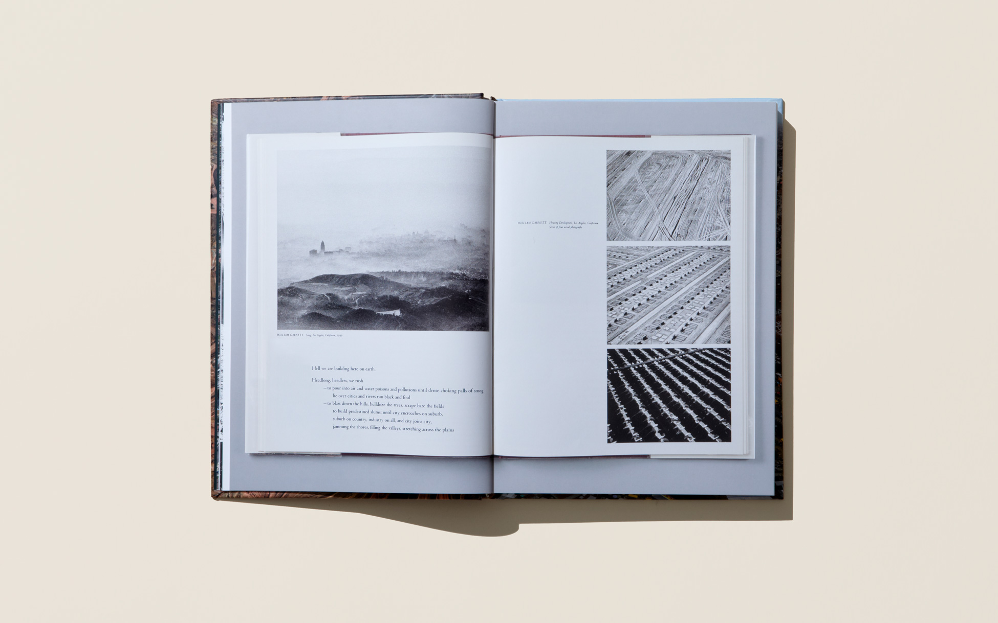 3-AlinaSkyson_Anthropocene_Book